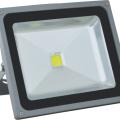 Proiector cu LED COB 30 W